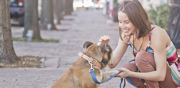 DOG ALLERGIES MESSING UP YOUR ROMANCE?