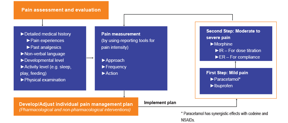 WHO guideline for pain management