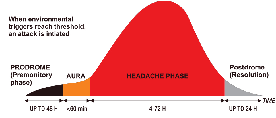The four phases of migraine